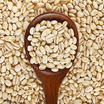 Barley in a spoon