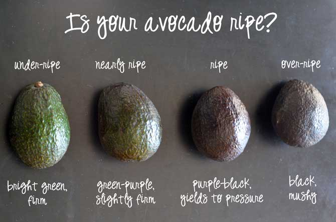 Different stages of Avocado ripeness