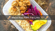 Fat Loss 101 How To Guide