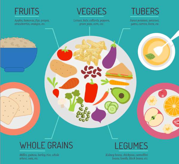 The Beginner's Guide to Starting a Plant-Based Diet