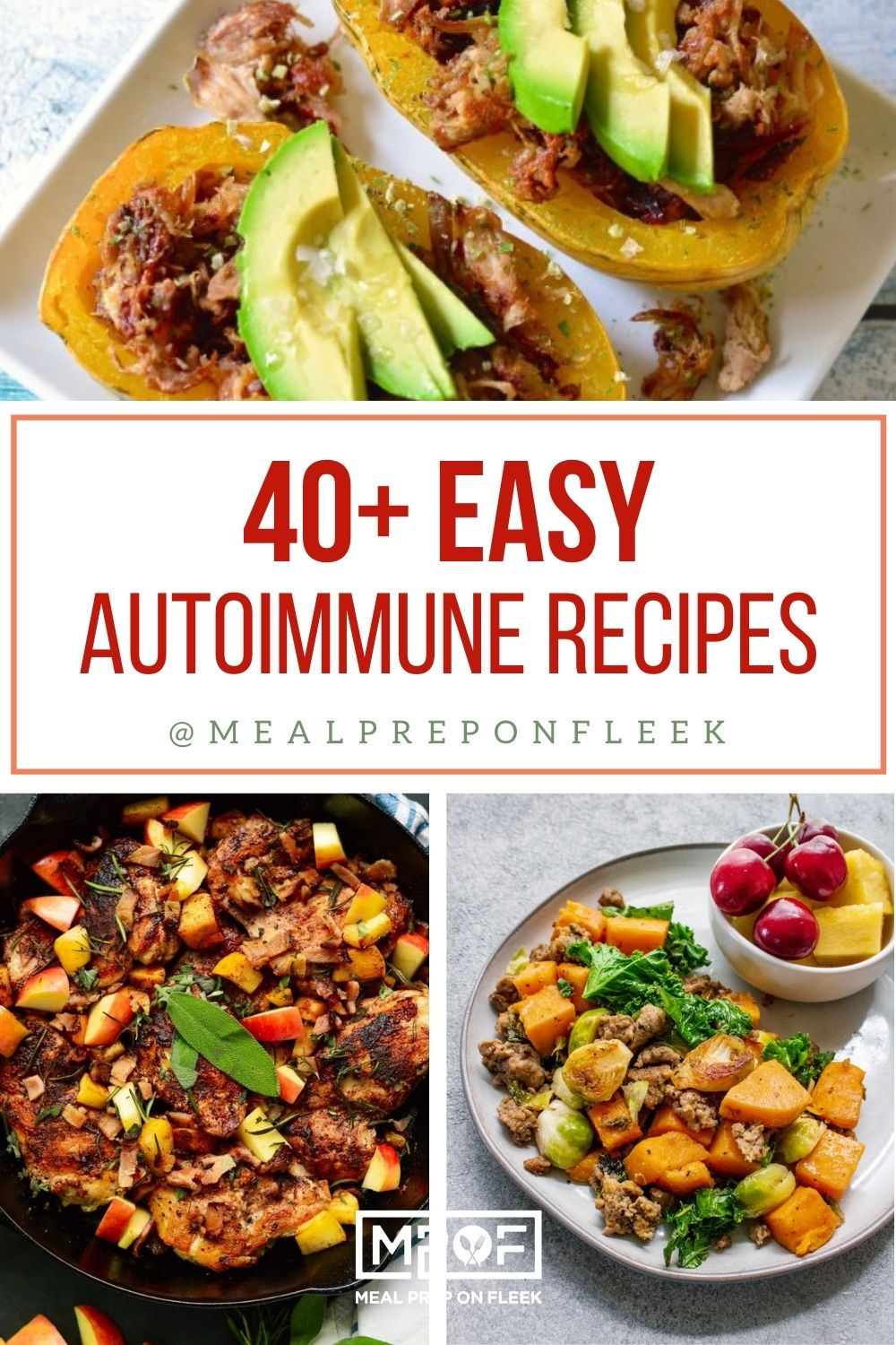 40 Easy AIP Friendly Recipes Pin (1)